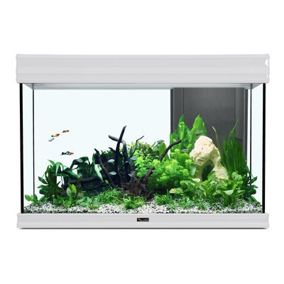 Aquatlantis Fusion 80 Aquarium