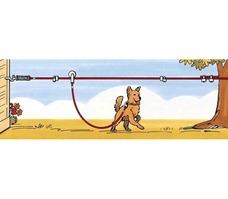 TRIXIE Auslaufleine zum Spannen mit Laufrolle, 15 m Preview Image