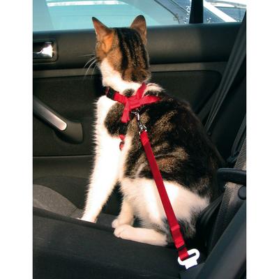 Trixie Autogeschirr Sicherheitsgurt für Katzen