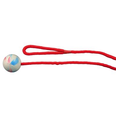 Trixie Hunde Ball am Seil aus Gummi