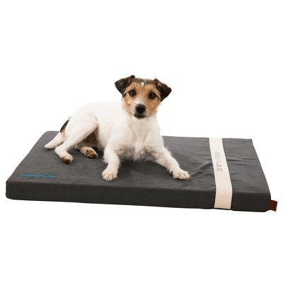 TRIXIE BE NORDIC Liegematte Amrum für Hunde Preview Image