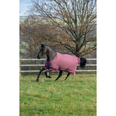 Bucas Winterdecke Freedom Turnout 300g Winter Preview Image