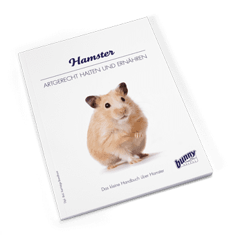 Bunny Book Hamster