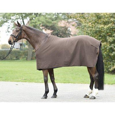BUSSE Abschwitzdecke für Pferde BASIC leicht