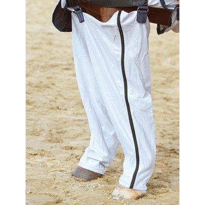 BUSSE Beine Complete Plus für Vorderbeine