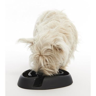 Buster Dog Maze Mini Anti Schling Napf Preview Image