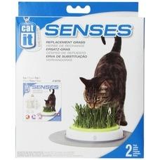 Catit Design Senses Gras Garten Nachfüllpack, 2er Pack