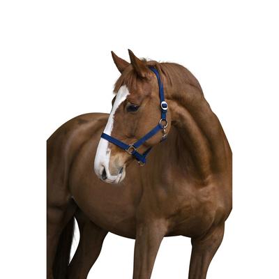 Covalliero Pferdehafter Classic Nylon