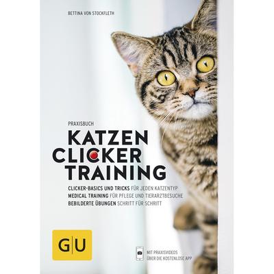 Clicker-Training für Katzen