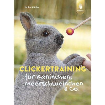 Clickertraining für Kaninchen