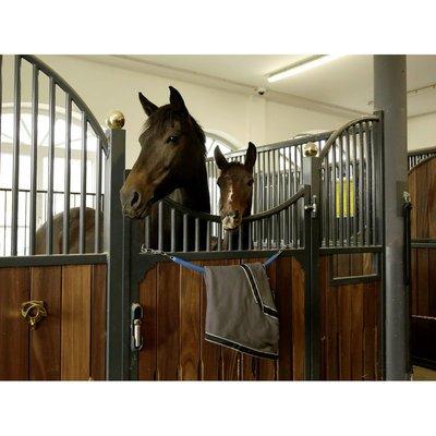 Covalliero Deckenhalter für Pferdedecken mit Kette Preview Image