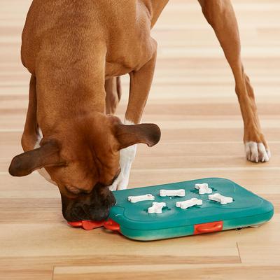 Nina Ottosson Dog Casino Hundespielzeug Plastik Preview Image