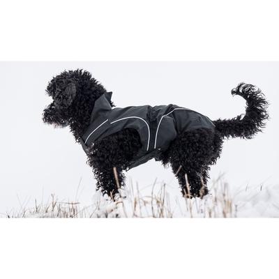 DogBite Hunde Ganzjahres Regenjacke Matt, schwarz - Gr. 45