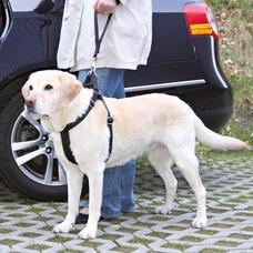TRIXIE Ersatz-Kurzführer für Auto Hundgeschirr