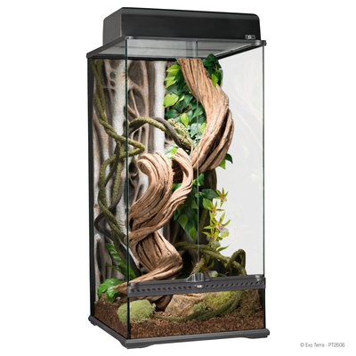 Exo Terra - Rainforest Vollglasterrarium