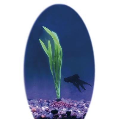 Fantasy Decor Silicon Aquarium Pflanze Bolivian Sword