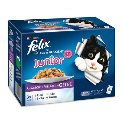 Felix So gut wie es aussieht Multipack Portionsbeutel, Junior 12x100g