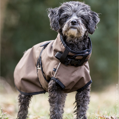 fit4dogs Hundemantel - Active Cape MINI, Rückenlänge 30 cm