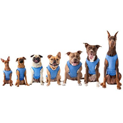 GF Pet ELASTOFIT® Kühlweste für Hunde