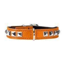 Hunter Halsband Rocky Petit für kleine Hunde Preview Image