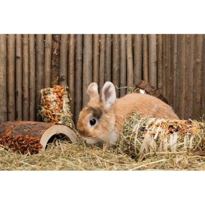 TRIXIE Holz Brücke Kaninchen und Kleinnager mit Gemüse und Nüssen Preview Image