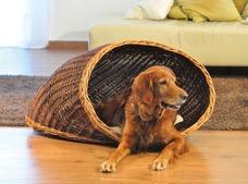 Aumüller Hunde Muschel Korb aus Weide