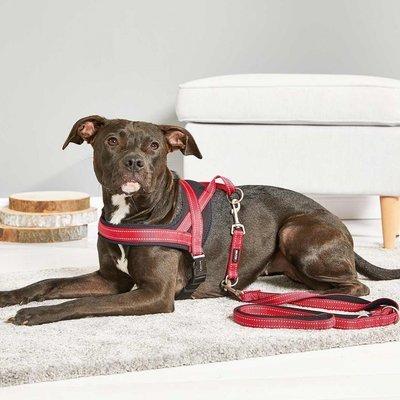 Wolters Hundegeschirr Soft & Safe reflektierend Preview Image