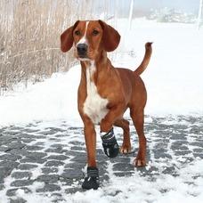 TRIXIE Hundeschuhe Pfotenschutz Walker Active Preview Image