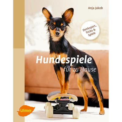 Ulmer Hundespiele für zu Hause