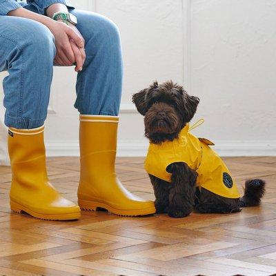Hunter Hunde Regenmantel Milford Preview Image
