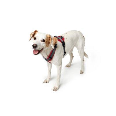 ideal f/ür sportliche Aktivit/äten weich gepolstert HUNTER Maldon Hundegeschirr,Y-Form