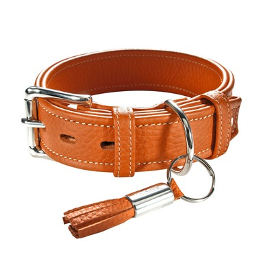 HUNTER Hundehalsband Cannes, 50, orange