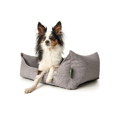 Hunter Hundesofa Prag