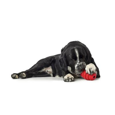 Hunter Hundespielzeug Talvik Reifen Preview Image