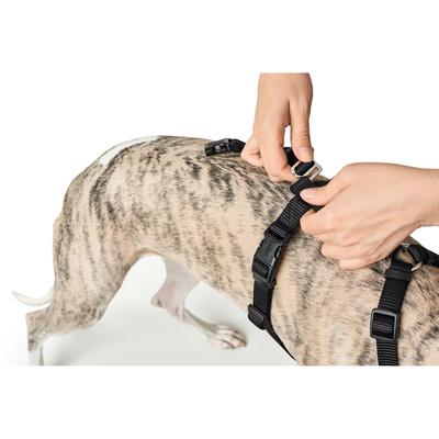 Rot f/ür Hunde Hunter Panikgeschirr Vario Rapid S