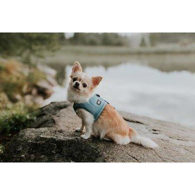 HURTTA Kühlweste für Hunde Preview Image