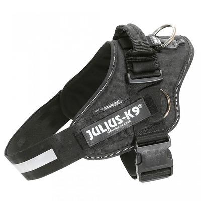 Julius K9 IDC-Powergeschirr mit Seitenringen