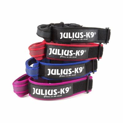 Julius K9 Halsband mit Haltegriff und Klettsticker