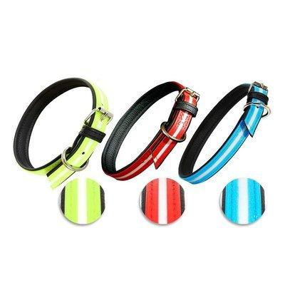 Julius K9 IDC Lumino Halsband