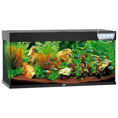 Juwel Rio 180 LED Aquarium