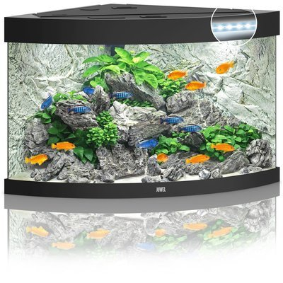 JUWEL Trigon 190 LED Aquarium