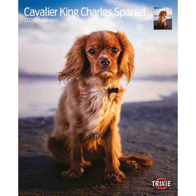 Trixie Kalender Cavalier King Charles Spaniel