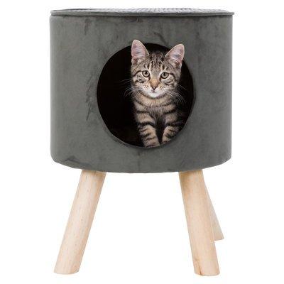Katzenhöhle Livia