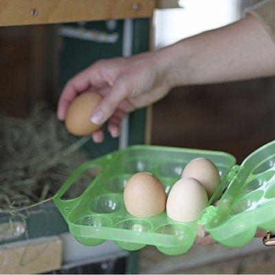 Kerbl Eier Aufbewahrung Preview Image