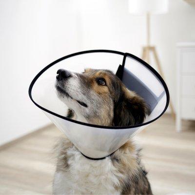Kerbl Halskrause für Hunde Preview Image