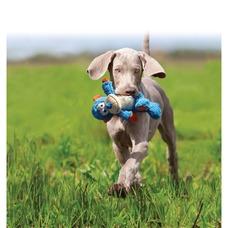 KONG Cross Knots Hundespielzeug Preview Image