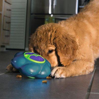 KONG Flipz Hundespielzeug Preview Image
