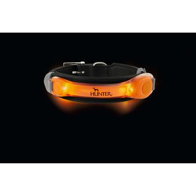 Hunter LED Halsband Leuchtadapter Yukon Preview Image