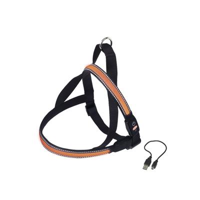 LED Norweger Geschirr FLASH MESH für Hunde, XL:  L: 80-100 cm + 56, B: 38 mm, orange