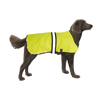 LED Sicherheitsweste für Hunde